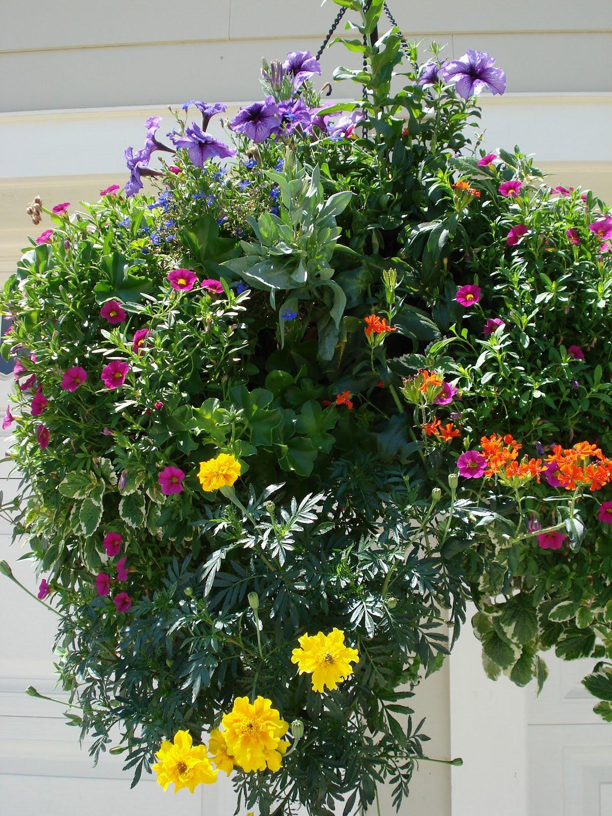 Big Bloomers Flower Farm Victorian Baskets