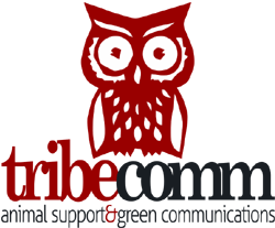 Tribe communications