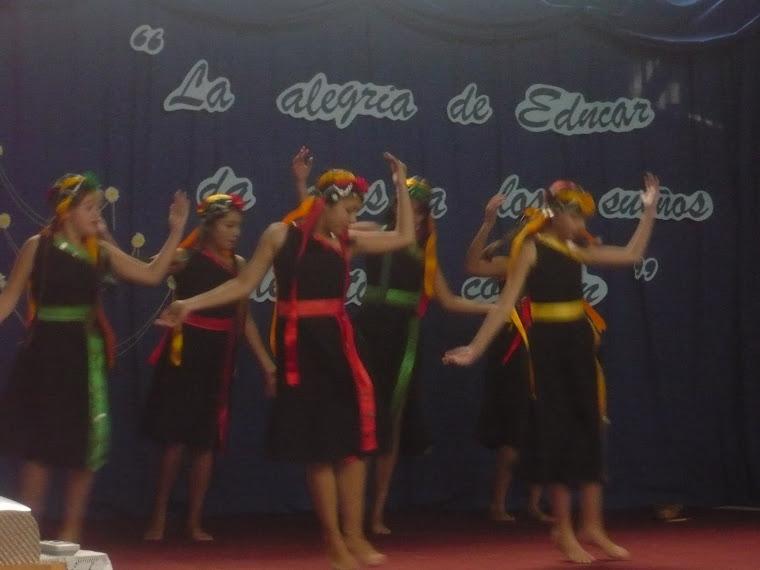 Danza Fantasia Mapuche