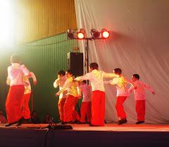 Presentacion Artística 2008