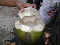 es dawegan kelapa muda