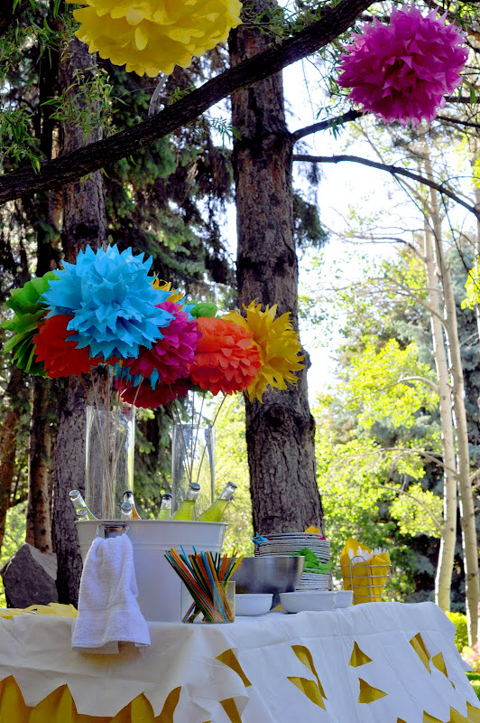 Aesthetic Nest Party Fiesta Forty Birthday Party