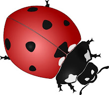 Click the ladybug to visit my blog for all my part time/fun time businesses