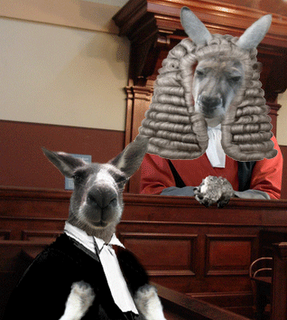 QB Kangaroo Court - Jobagy & Rawlins in The Hat