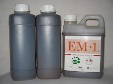 EM AS /EM-1