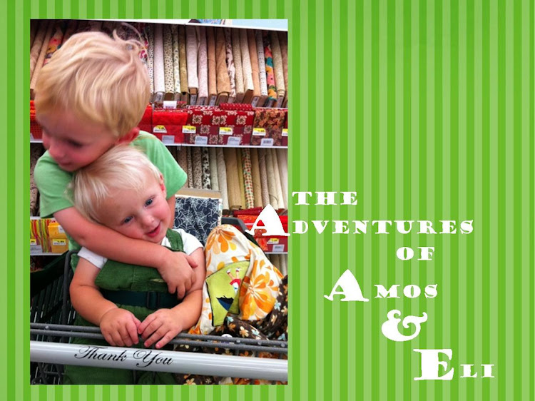 The Adventures of Amos and Eli