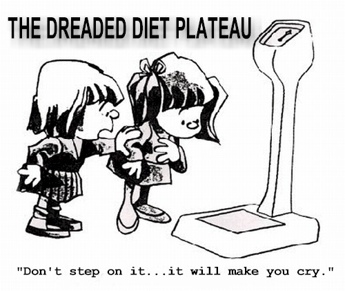 The Dreaded Diet Plateau
