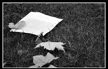 los escritos que nunca te entregue, siguen ahi...SIENDO TUYOS