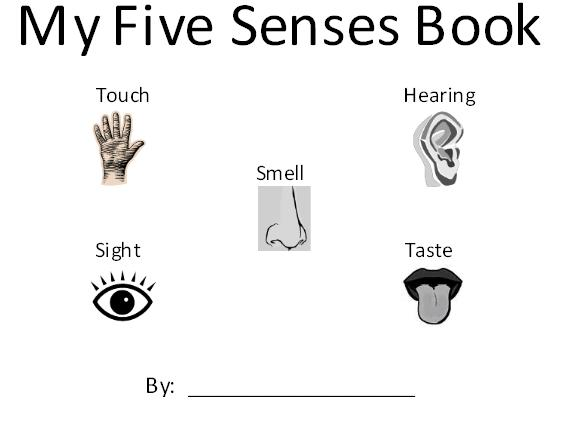 Légend image with 5 senses book printable