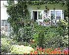 plantas jardin fuentes jardines fuentes jardin