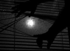 Robaría la luna si te da miedo lo oscuro.