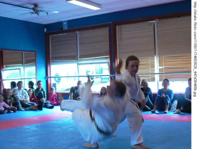 [judo+background001.jpg]