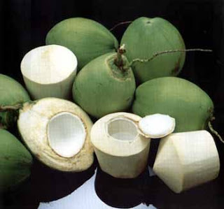 Young Coconut Water For Pregnant Women
