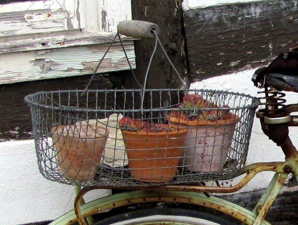 garten anders ein altes fahrrad als gartendekoration. Black Bedroom Furniture Sets. Home Design Ideas