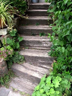 Steinplatten stufen