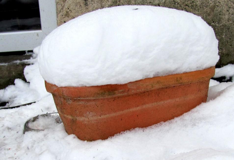 Garten anders die winterdeko versinkt im schnee for Garten winterdeko