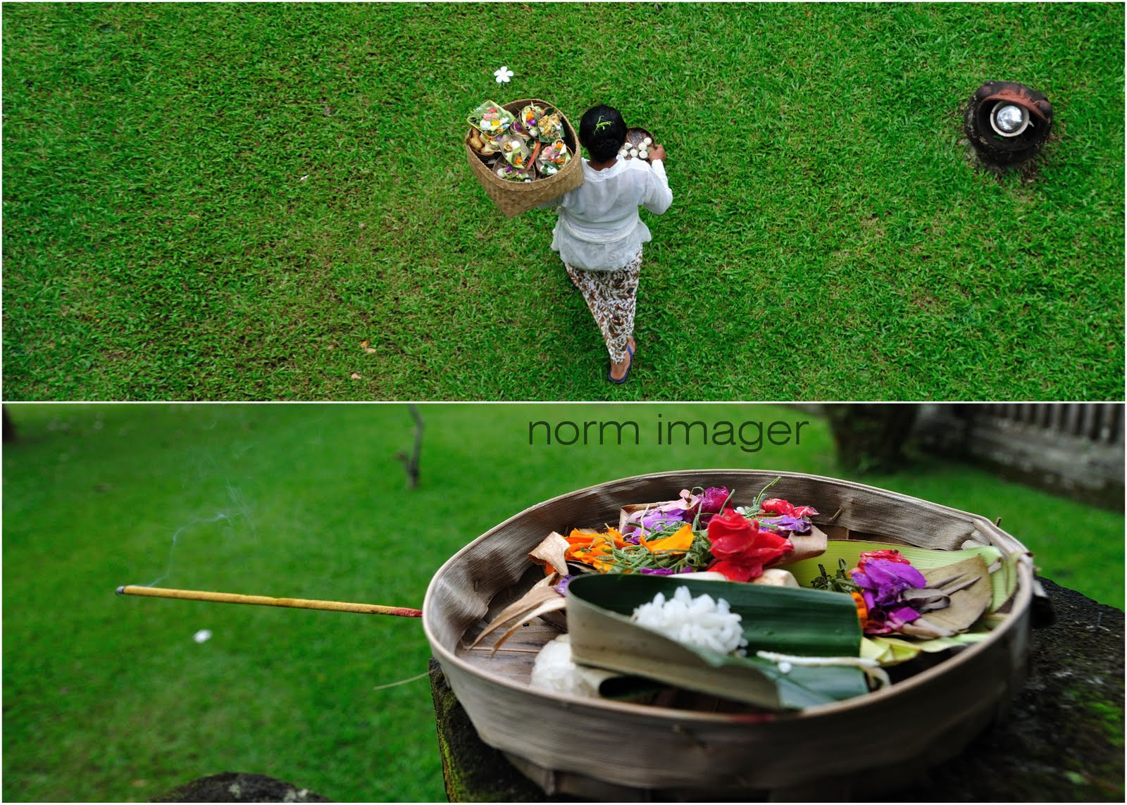 Travel Norm Aotearoa Bali Ubud Pura Ayun