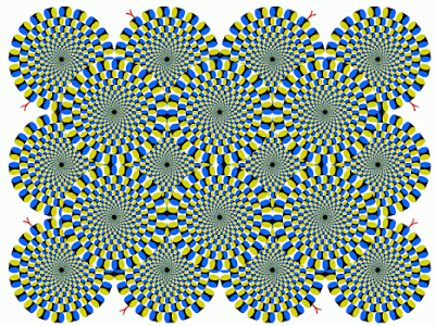 no motion eye illusion