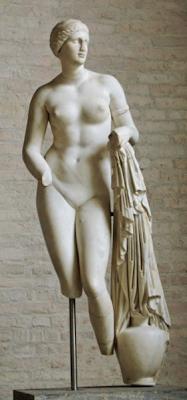 Venus Braschi