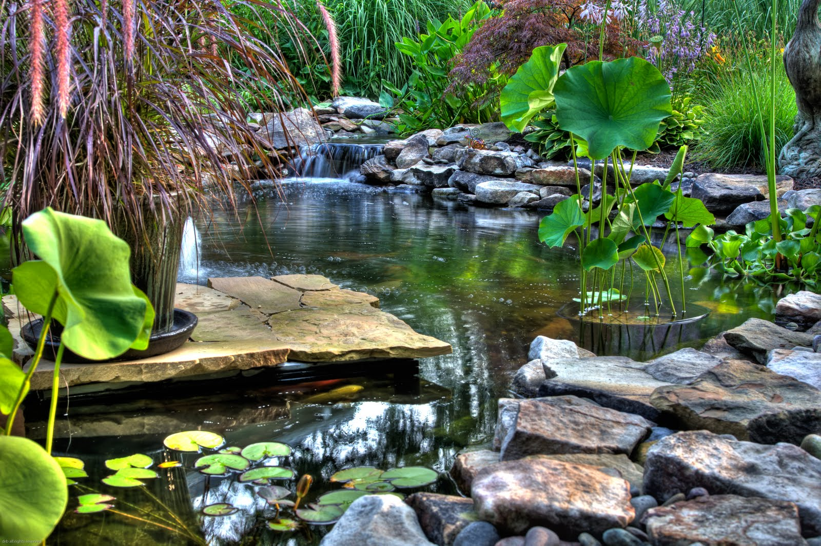Pond designs natural swimming ponds for Pond landscape