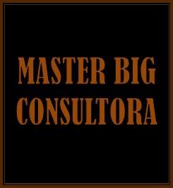 MASTER BIG CONSULTORA