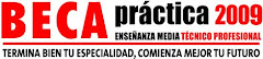 PARA OPTAR A LA BECA PRACTICA TECNICO PROFESIONAL
