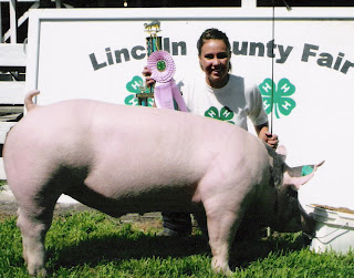 Young lady and her swine with ribbon and 4-H sign in back