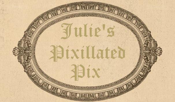 Julie's Pixillated Pix