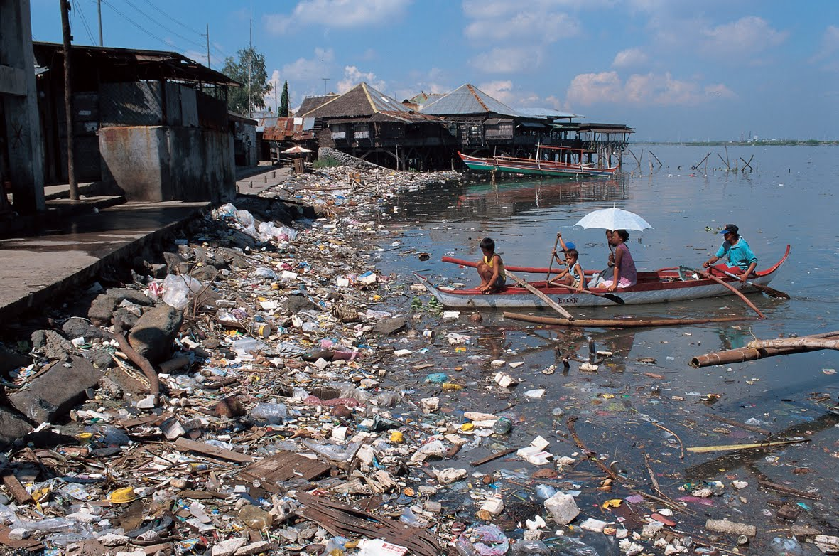 Environmental Degradation: causes of water pollution
