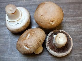 Funghi di castagno