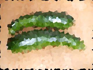 zucchine del mio orticello