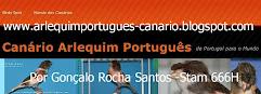 Gonçalo Rocha Santos