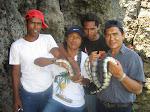 pulau Ular Wera-Bima
