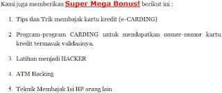 Gambar Situs Scam3