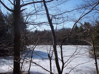 photo of Storrow Pond, Hale Reservation, Westwood, MA