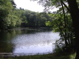 photo of Hillside Pond in the Blue Hills, Milton, MA