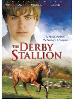 Derby stallion