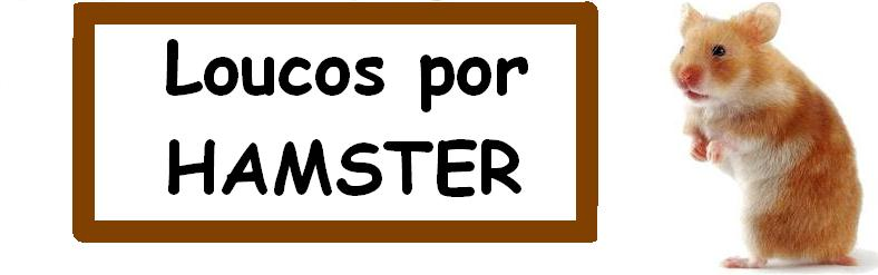 Loucos por HAMSTER