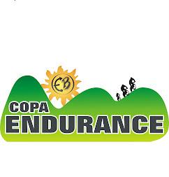 Copa Endurance