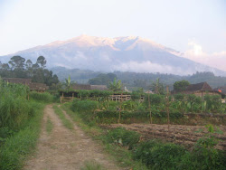 Merbabu