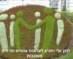 כרזות וערוגות צמחים ופרחים מעוצבות