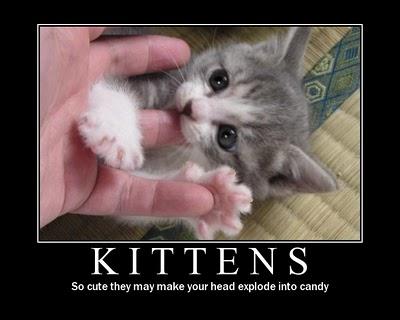 Kittens+candy.jpg