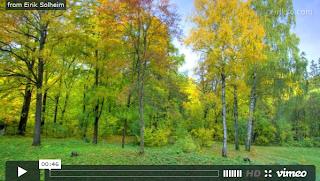Vídeo: El paso del tiempo