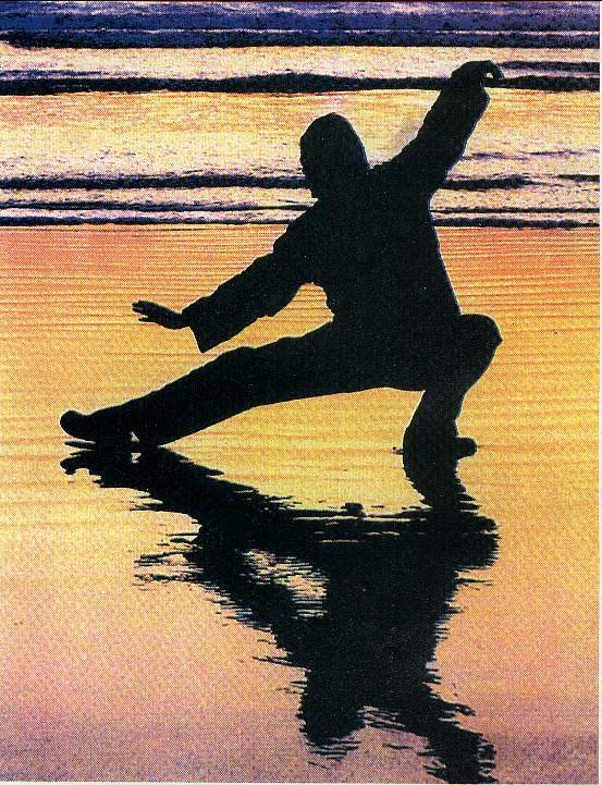 Artes marciales la esencia del combate es el arte de - Tari chi la paga ...