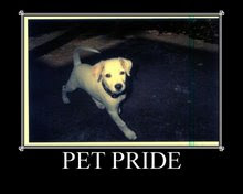 Proud Member of Pet Pride