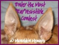 """Ear""risitible Contest"