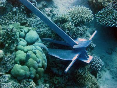 danos+em+corais.jpg