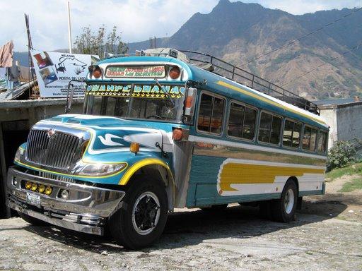 [Chicken+Bus1]