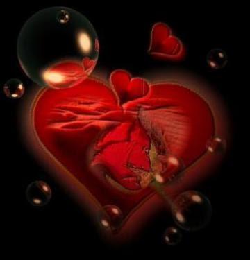 corazones y amor. corazones de amor fotos.