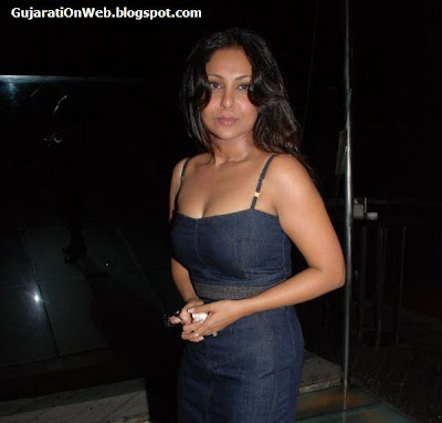Shefali Shah at Shefali Shah's bash in Vie Lounge on May 7th 2008